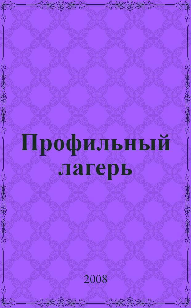 Профильный лагерь: от идеи до воплощения : опыт работы учреждений системы образования Нижегородской области : сборник