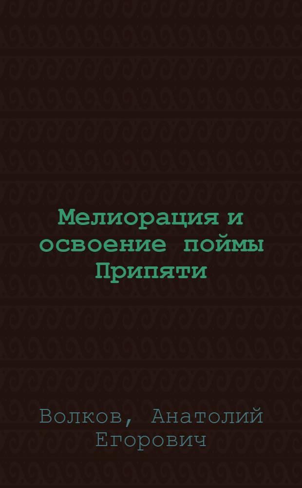 Мелиорация и освоение поймы Припяти