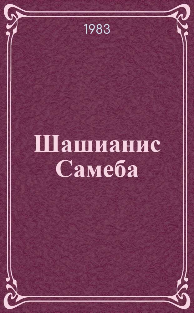 Шашианис Самеба : Композиция зал. церкви, осложн. вспом. помещениями : Доклад : IV Междунар. симпоз. по груз. искусству