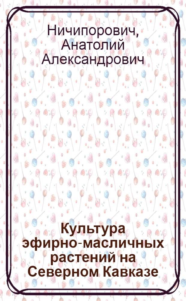 ... Культура эфирно-масличных растений на Северном Кавказе