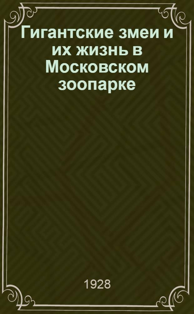 Гигантские змеи и их жизнь в Московском зоопарке