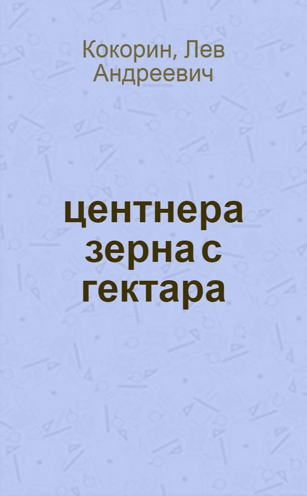 """34 центнера зерна с гектара : Колхоз """"Авангард"""" Чкалов. р-на"""
