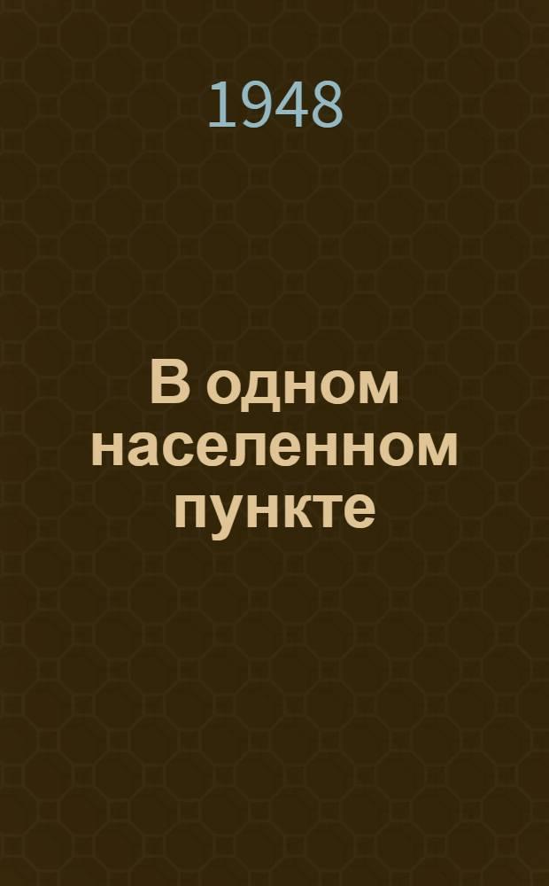 В одном населенном пункте : Записки пропагандиста