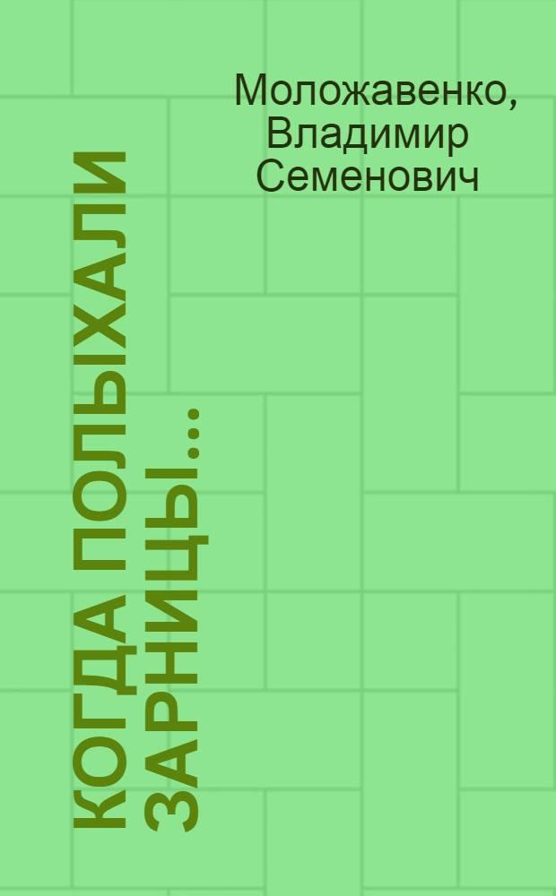 Когда полыхали зарницы... : Рассказ о жизни и смерти Коли Руднева