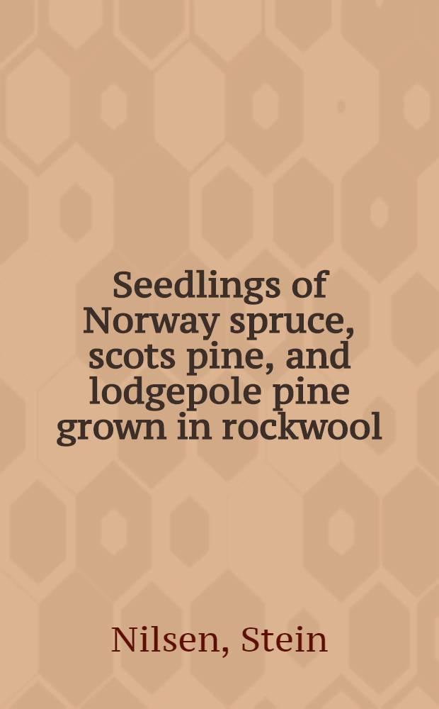 Seedlings of Norway spruce, scots pine, and lodgepole pine grown in rockwool