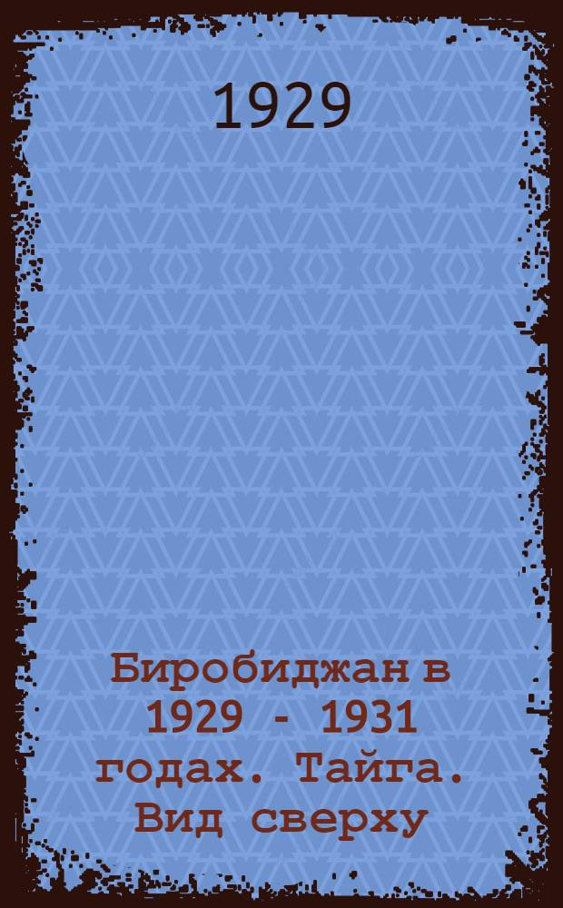 Биробиджан в 1929 - 1931 годах. Тайга. Вид сверху