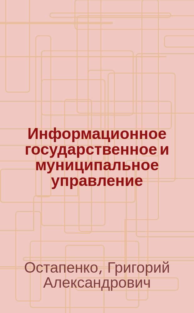 Информационное государственное и муниципальное управление : учебное пособие